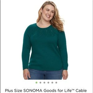 NWT Sonoma Plus Size Cable Knit Sweater